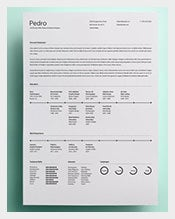 modern resume design template download - Example Of Modern Resume