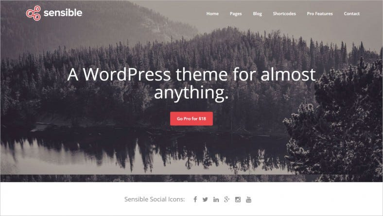 Multi Purpose Business WordPress Theme Free Download