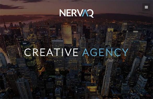 nervaq responsive wordpress theme