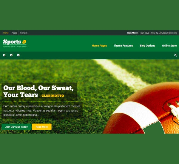 non profit sport wordpress club theme