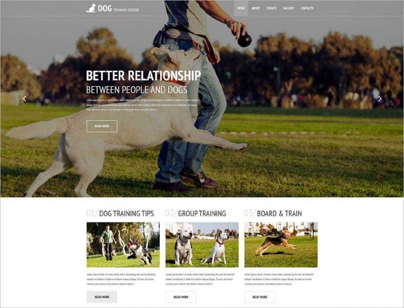 Parallax Effect Dogs Training Center Website Template