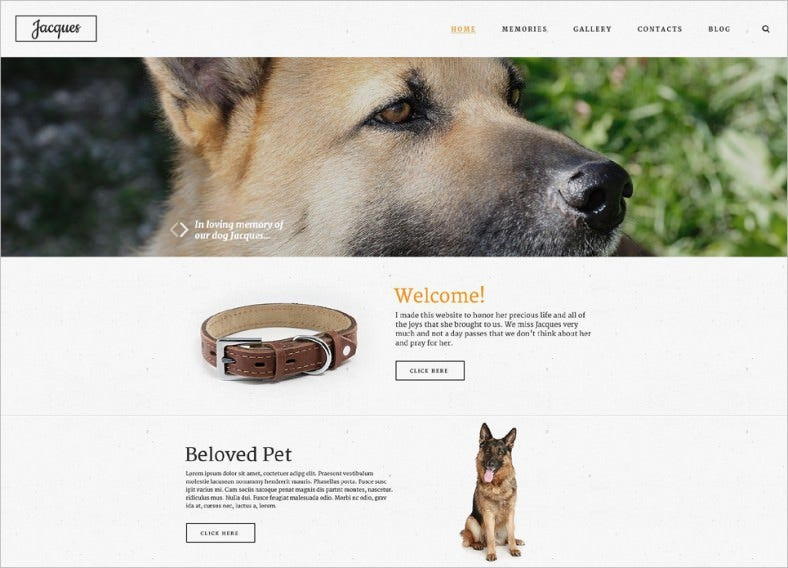 Parallax Effect Website Template for Pet Store