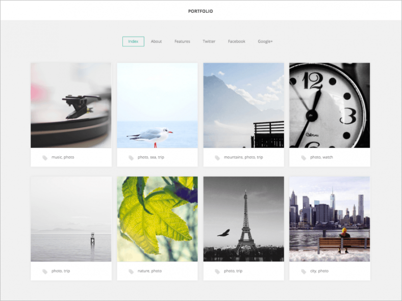 photographer designer portfolio wp theme free download 788x591