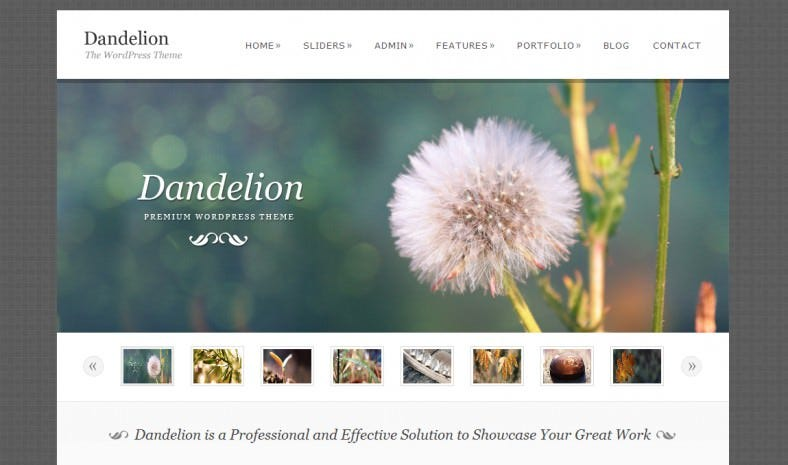 Powerful Elegant WordPress Theme