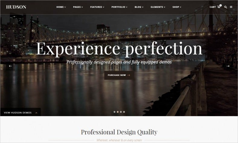Professional & Advanced WordPress Theme