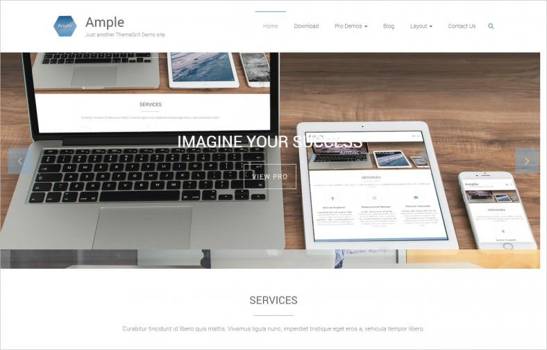 Professional & Clean Business Theme Free Download