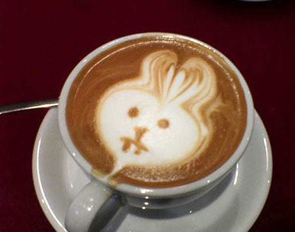 rabbit coffee art