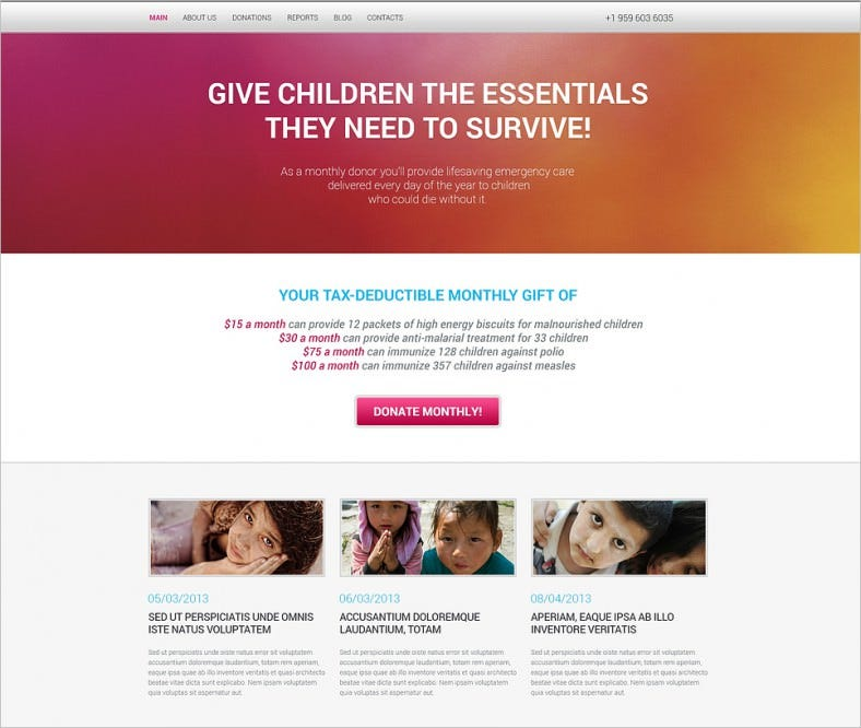 Responsive Simple Charity WordPress Template