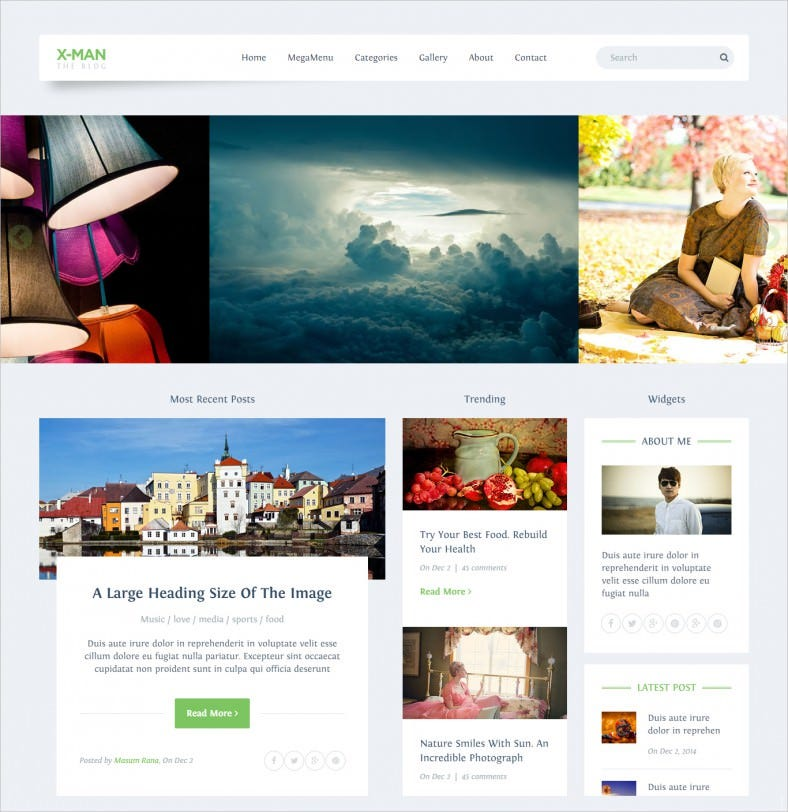 SEO Friendly Personal Blogging Website Template