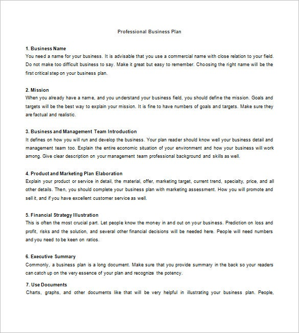 sample proffesional business plan template
