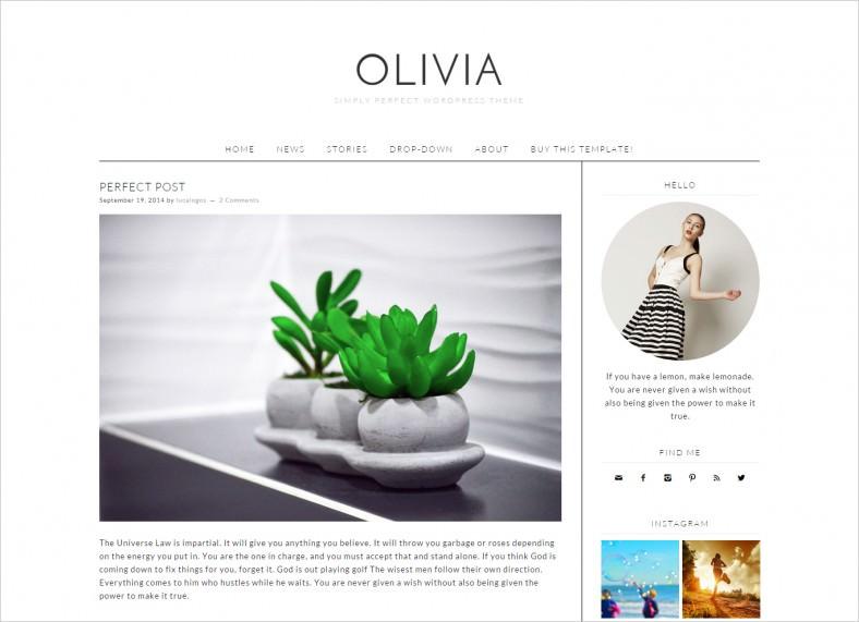 Simple & Modern WordPress Template