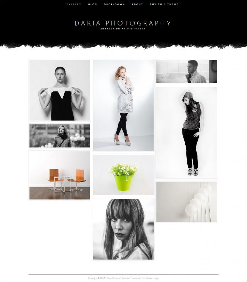 Simple & Modern Wp Theme for Photography