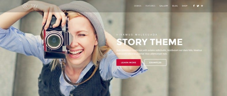 story creative responsive multi purpose theme 788x334