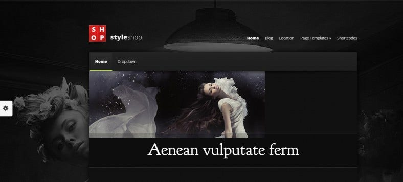 styleshop ecommerce wordpress theme 788x356