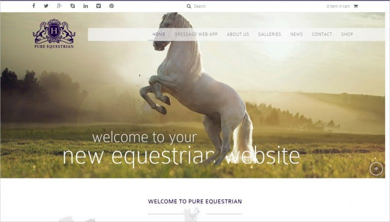 Ultra Modern Horse Racing Website Template
