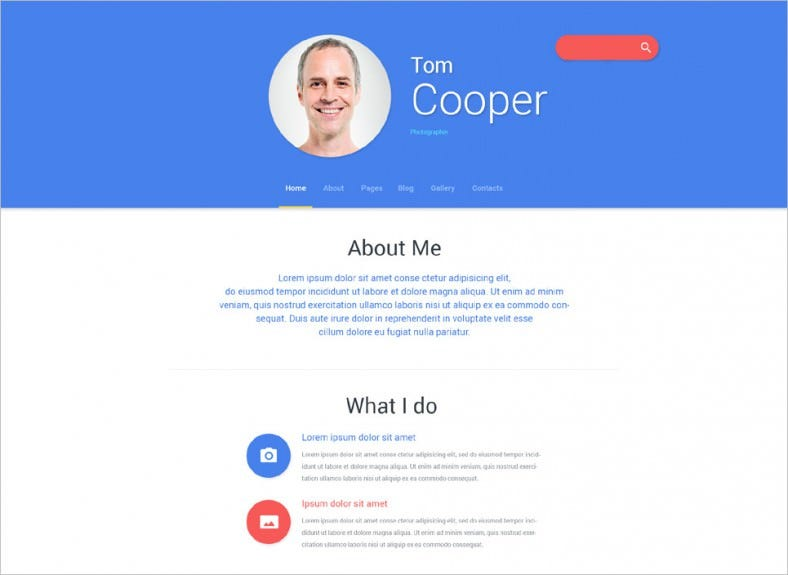 White & Blue Joomla Theme for Personal Profile