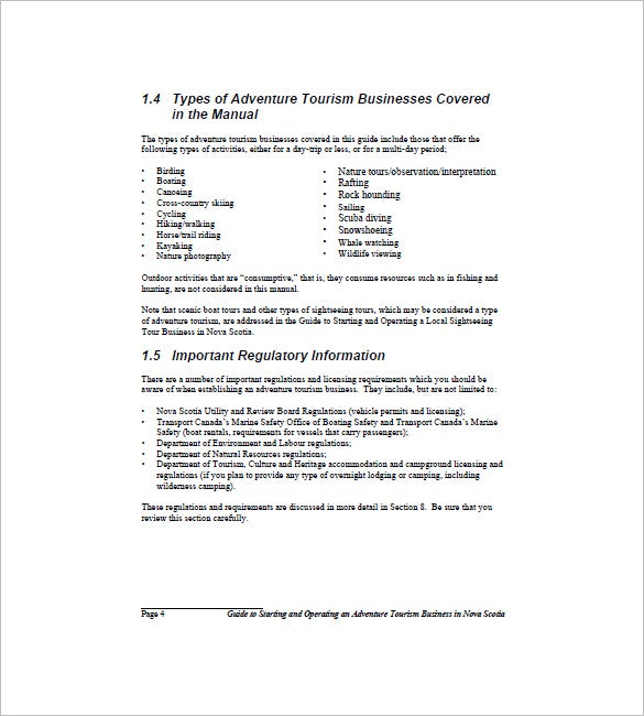 Travel Business Plan Template   Free Sample Example Format