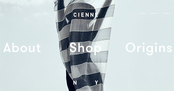 cienneny website design idea