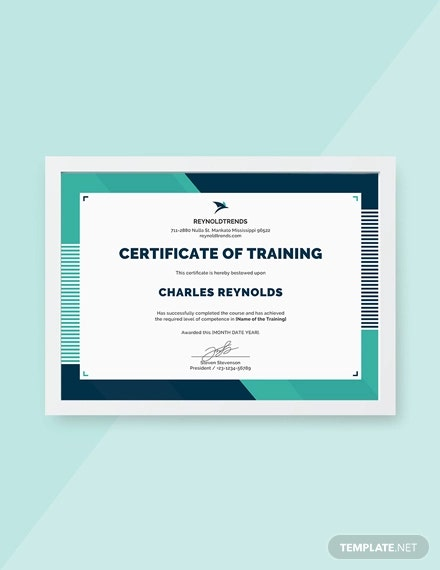 Sample Training Certificate | 29 Training Certificate Templates Doc Psd Ai Indesign Free