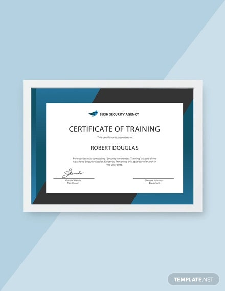 12  safety certificate template