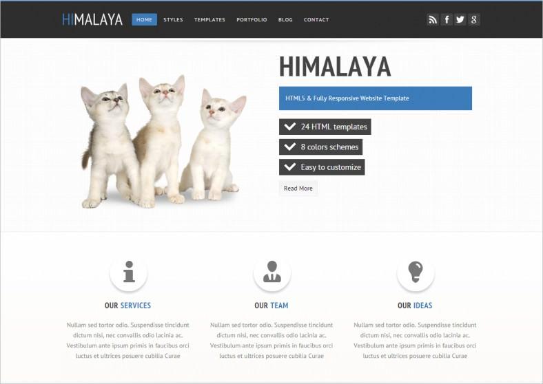 31+ Responsive Website Themes & Templates | Free & Premium Templates