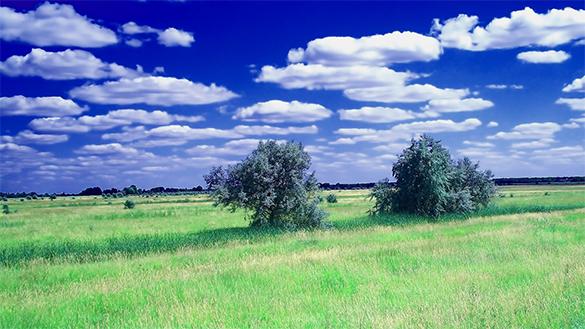 elegant summer background free download
