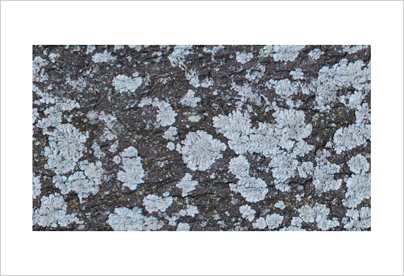 obsidiandawn seamless textures in photoshop tutorial
