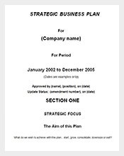 Free-Strategic-Business-Plan-Template