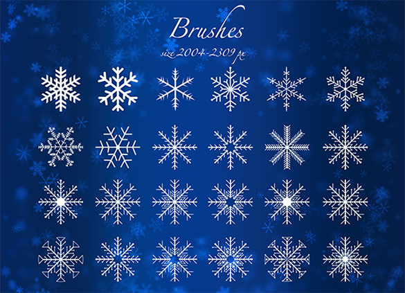 24 premium snowflake brushes for you