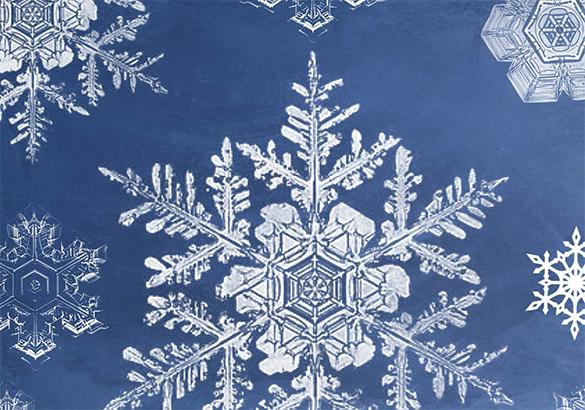 22 elegant snowflake brushes for free