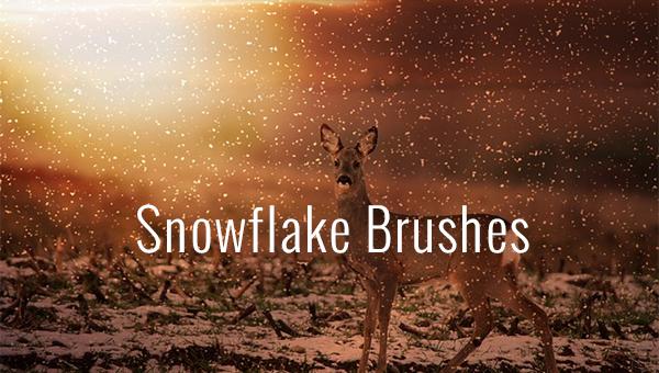 snowflakebrushes