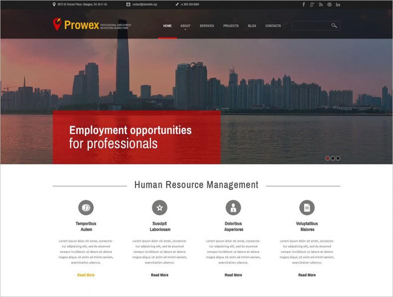 professional employment wordpress theme 788x596