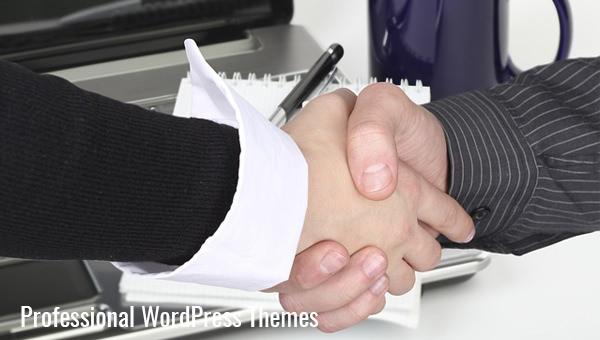 professionalwordpressthemes