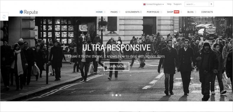 repute responsive multipurpose theme 788x381