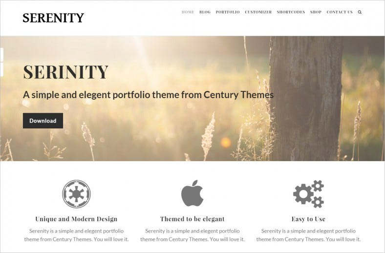 serenity creative wordpress theme 788x518