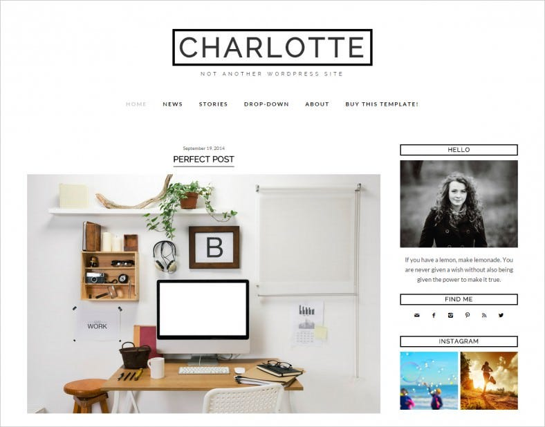 charlotte wordpress template blog 788x618