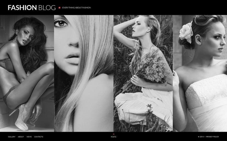 fashion blog website template 788x492