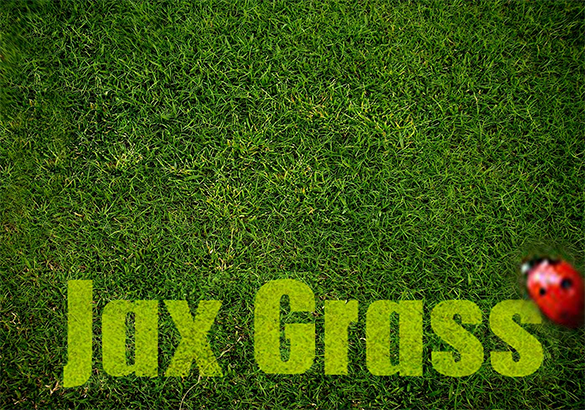 6 beautiful photoshop grass brushes free download
