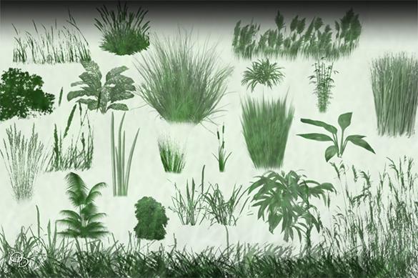 25 free elegant grass photoshop brushes