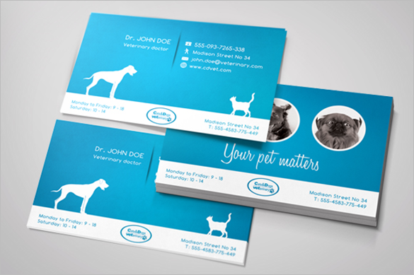 premium veterinary blue business card