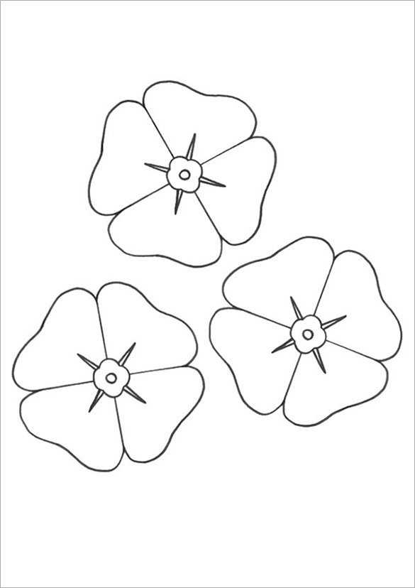 21 Poppy Coloring Pages  Free Printable Word PDF PNG JPEG