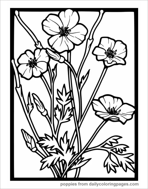 18+ Poppy Coloring Pages - PDF, JPG | Free & Premium Templates