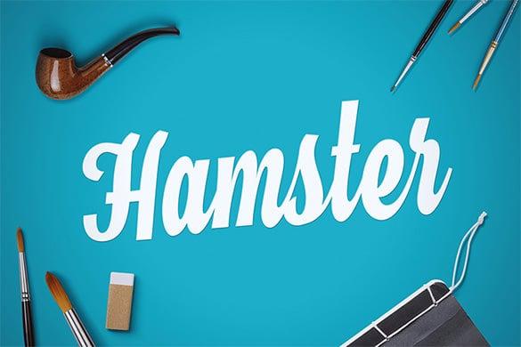 hamster script modern font for designers