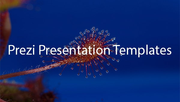 prezipresentationtemplates1