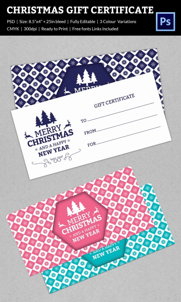 Magical Christmas Gift Certificate Example Template Download