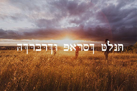 stunning hebrew parse font for free