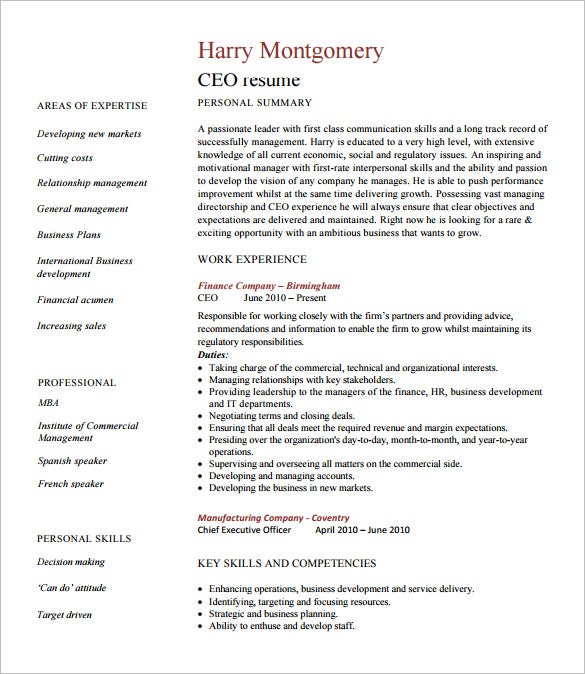 Chief Executive Officer Resume Template   Free Word Excel Pdf