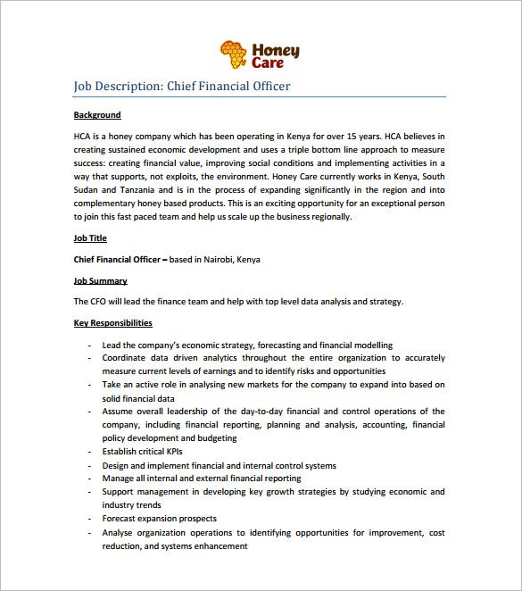 financial chief executive officer resume pdf free download