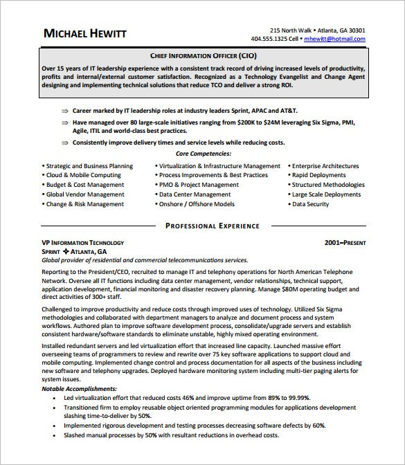 chief information executive officer resume pdf download