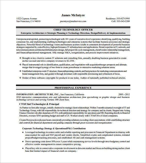 chief technology officer executive resume pdf download